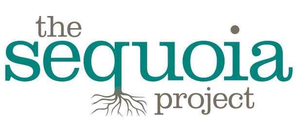 The Sequoia Project oversees interoperability via Carequality and the eHealth Exchange