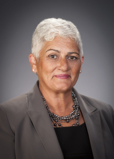 Christina Galanis is President and CEO of HealthlinkNY