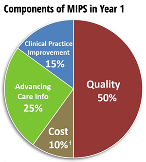 MIPS scoring in the first performance year